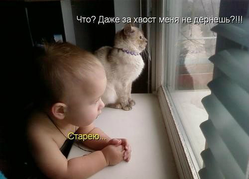 http://122012.imgbb.ru/user//3/20d1eb457dec37738e75d336c1eb33e1.jpg