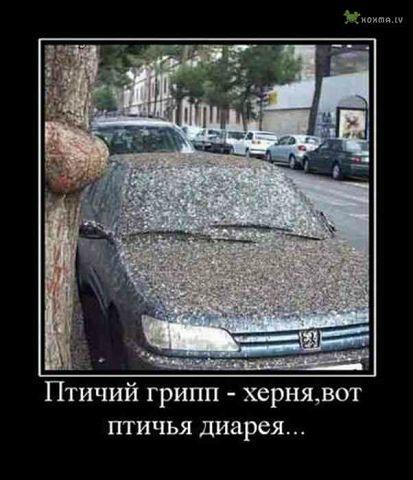 http://122012.imgbb.ru/user//3/ec0d14751d5f10a5bc2d2b7d0ec8de84.jpg