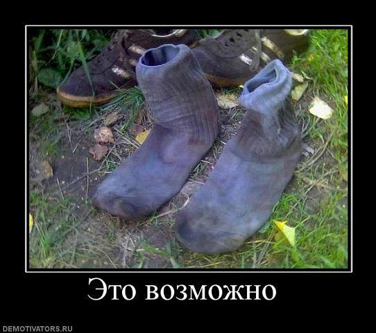 http://122012.imgbb.ru/user//3/f10dbc28f32c67ebcebdef21b0d51aad.jpg