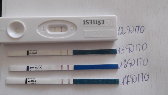 Капли крови на белье при беременности