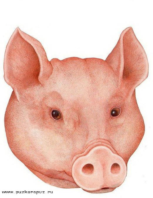 Маска из бумаги свинья