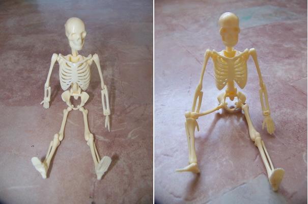 Скелеты суставы игрушек лечение суставов в термальных источниках на ставрополье