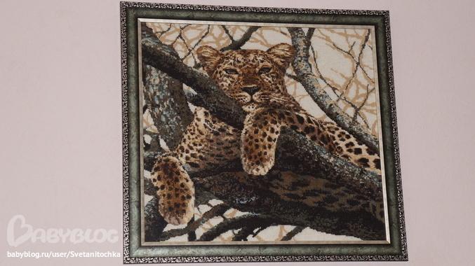 моего Леопарда от Риолис.