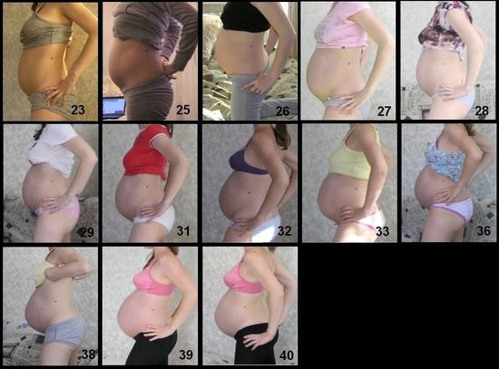 Как беременной мерить температуру 63