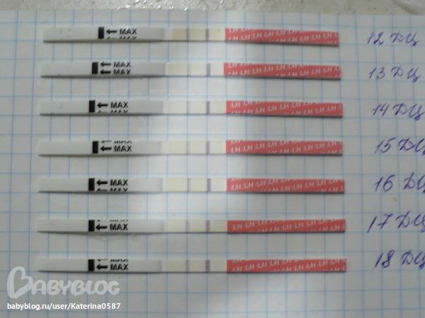 Wonder Test на овуляцию инструкция - фото 6