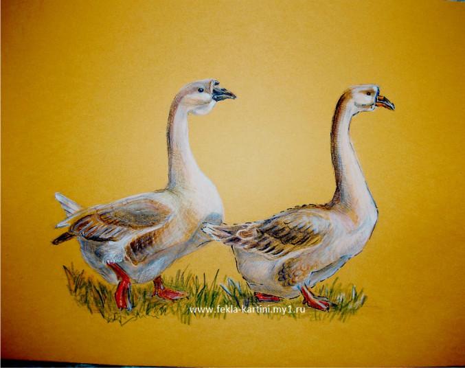 Рисунок с гусями