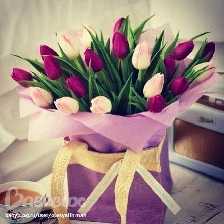 На 8 марта цветы  для бабушек