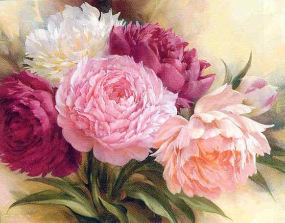 """Предпросмотр схемы вышивки  """"букет пионов """". букет пионов, цветы, предпросмотр."""