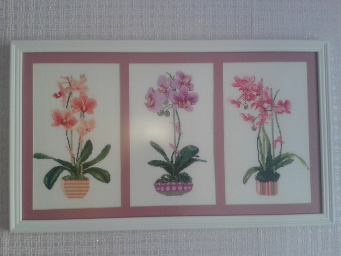Орхидеи в оформлении