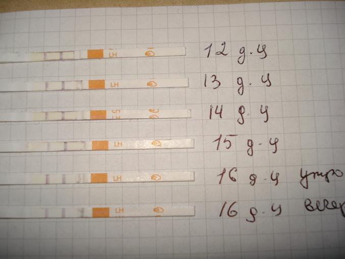Может ли дюфастон повлиять на тест на беременность - ddb2