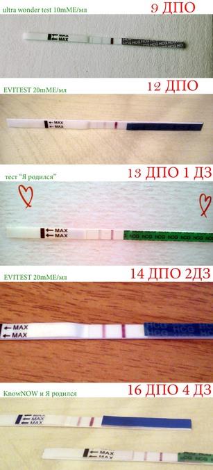 Как сделать так чтобы тест на беременность был отрицательный