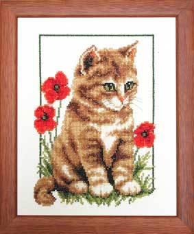 Вышивка котята в маках
