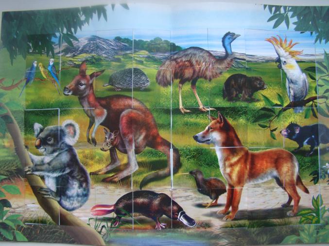 Животные австралии поделки для детей 7